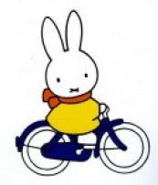 grootte fiets bepalen